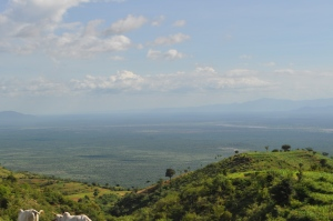 Signs of the Rift Valley
