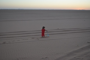 Lily at dawn in the Nubian