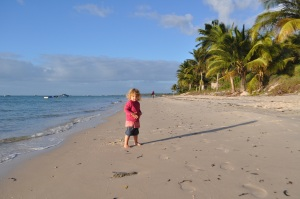Lily on baobab tree resort beach