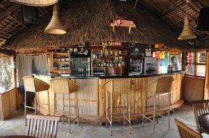 Bush Camp bar