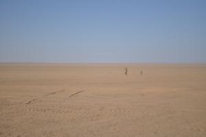 Terrains travelled, desert roads