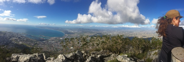 Pano Cape Town